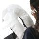 Proteção Facial Marquesa